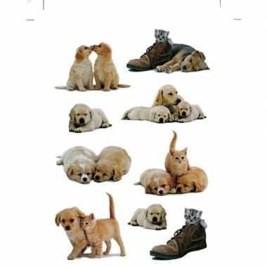 27x honden/puppy/poezen/katten stickertjes voor kinderen