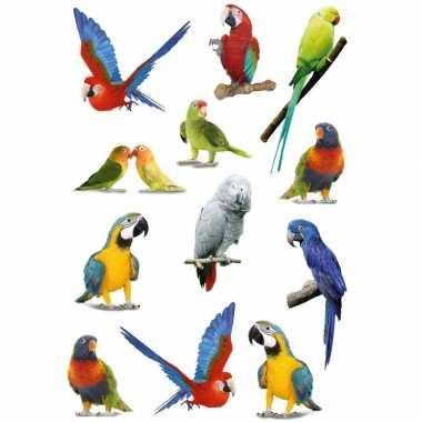 36x vogel stickers voor kinderen