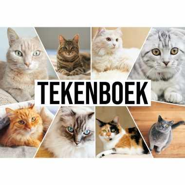 A4 katten waaier schetsboek/ tekenboek/ kleurboek/ schetsblok wit papier