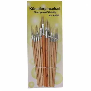Voordelige penselen set naturel 12 stuks