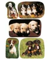 15x honden puppy stickertjes voor kinderen