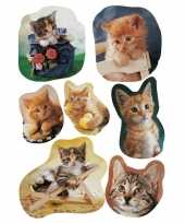 21x kitten stickertjes voor kinderen