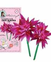Diy knutselset jill crepe bloemen maken