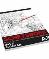 Professioneel schetsboek tekenboek a3 formaat