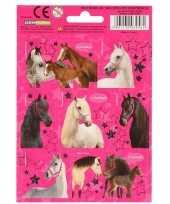 School agenda stickers paarden set 5 10 stuks
