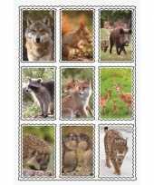 Speelgoed 3d stickers van wilde dieren